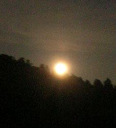 感激、北鎌倉の夜空に輝く満月をゲット!(2005・8・20)_c0014967_2244469.jpg