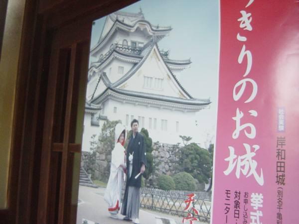 岸和田・五風荘とその周辺(お城、神社など) 林英世ひとり語り_c0009815_22281038.jpg