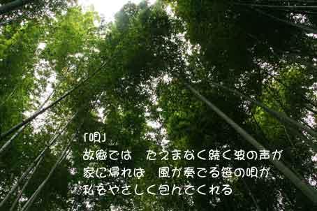b0044724_18221463.jpg