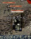 b0069679_1373130.jpg