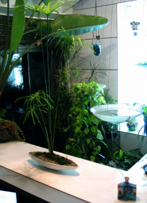温室を取り込んだグリーンリビング_e0010418_14493643.jpg