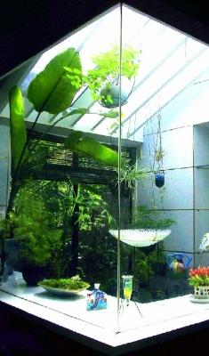 温室を取り込んだグリーンリビング_e0010418_1450089.jpg