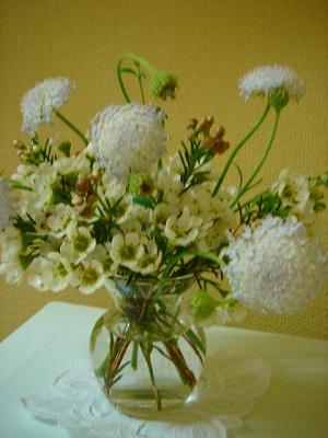 今日のお花_e0042839_21173739.jpg