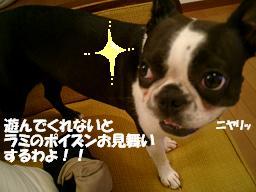 d0041575_20132143.jpg