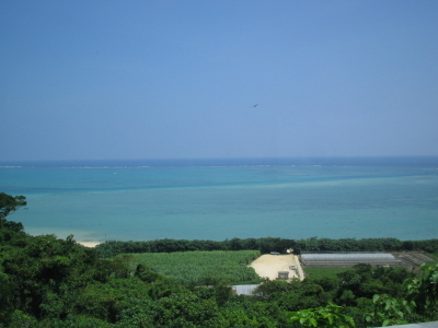 沖縄から戻りました。_d0047811_21485652.jpg