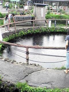 日本の名水百選_c0053520_23571876.jpg