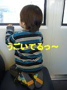 e0012343_3112979.jpg