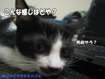 b0041182_001859.jpg