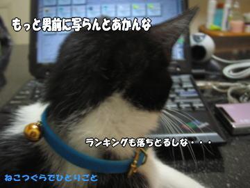 b0041182_0115053.jpg