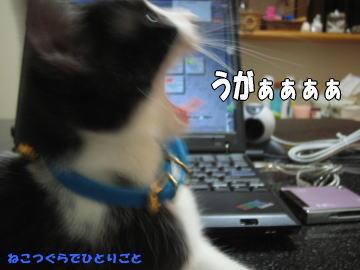 b0041182_12185417.jpg