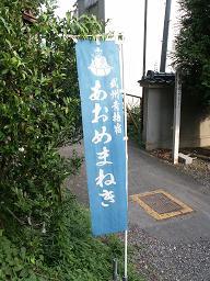 阿於目猫祖神(青梅 住吉神社)_e0023828_21142988.jpg