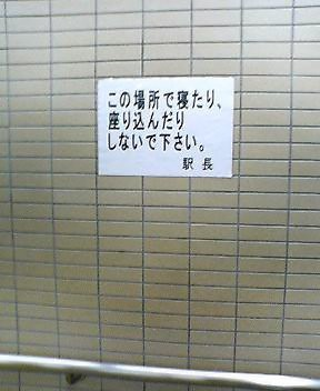 a0009861_161495.jpg