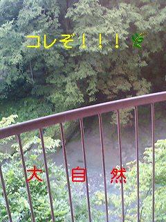 d0044736_218356.jpg