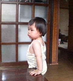 シオの姪っ子ユマです♪_e0062921_17433429.jpg