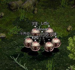 b0050075_1662915.jpg