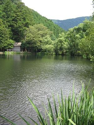 残夏の湯布院・・・金鱗湖_c0001578_2233567.jpg