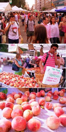 グリーンマーケットで収穫の秋を感じる_b0007805_10313425.jpg