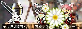 b0048492_13585067.jpg