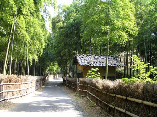 竹林公園1_e0048413_21273261.jpg