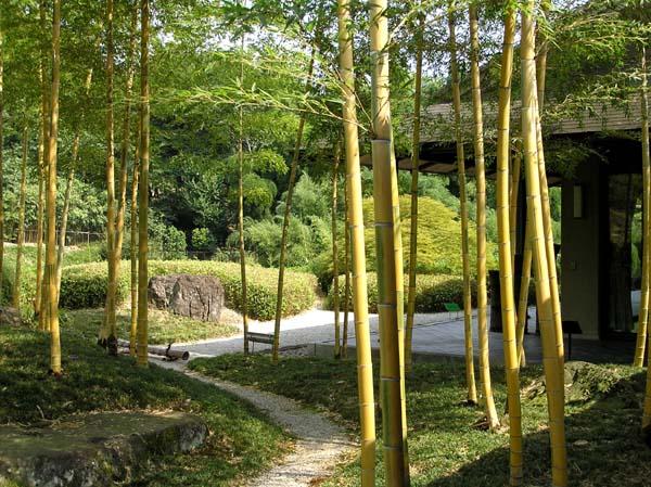 竹林公園2_e0048413_21372096.jpg