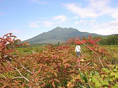 38年ぶりの尾瀬はススキが穂を出して早、秋景色に!_c0014967_22335594.jpg