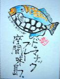 沖縄 座間味島の休日 _d0046025_19123888.jpg