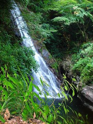 布引の滝から青山高原へ_d0055236_06108.jpg