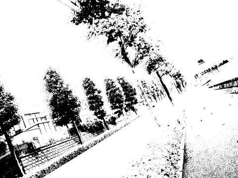 a0020116_957188.jpg