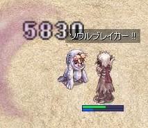 b0037741_1091786.jpg