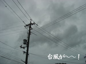b0066985_2046356.jpg
