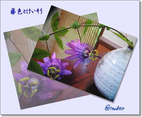 b0066985_13582880.jpg