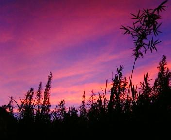 ●膨大なブラジル各地での写真・・・今日の夕空☆なんて星?_b0032617_19355428.jpg