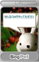 a0023548_20401562.jpg