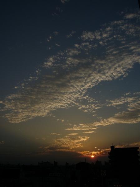 Rising Sun 05.09.09_c0030874_7124860.jpg