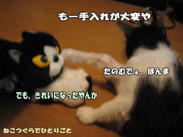b0041182_21404365.jpg