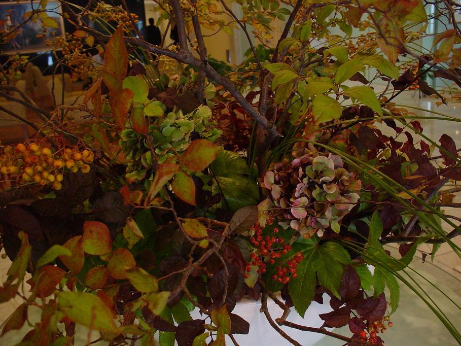 秋ですよー。_c0069389_15373225.jpg