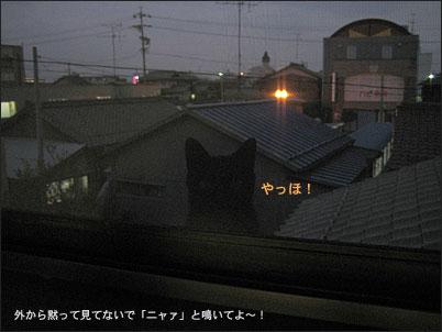 d0010566_149684.jpg