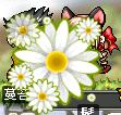 c0068266_12341418.jpg