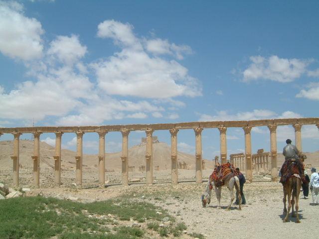 パルミラ遺跡 Palmyra (7)_c0011649_1355961.jpg