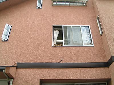 窓辺にて・・・_a0028451_12592410.jpg