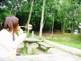 ピクニックに行きたい♪_e0073946_19324260.jpg