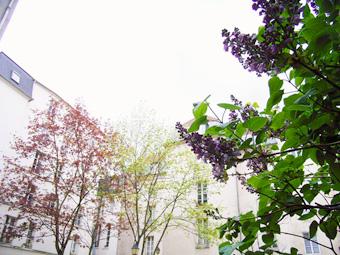 La pensee pour de Paris (a` Kyoto)_e0073946_18551546.jpg