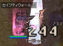 e0064653_1991131.jpg