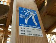 栄町の家の建前 02_e0054299_2312343.jpg