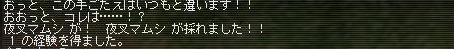 c0040703_7453281.jpg