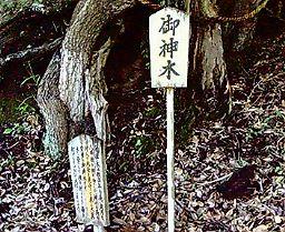 国影・八幡神社5_e0063268_7531890.jpg