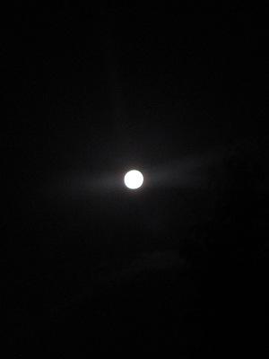 白く明るい十五夜・・・「中秋の名月」_c0001578_213972.jpg