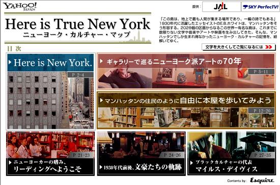 魅惑の街ニューヨークを堪能したい_b0007805_1294710.jpg