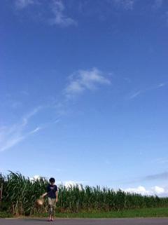 「OKINAWAからの手紙」のu-wakarokuさん登場!_c0039735_1063528.jpg