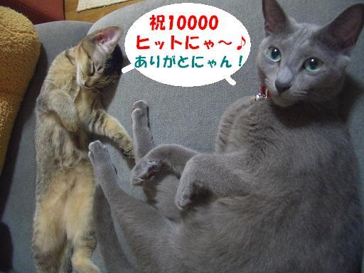 d0045408_2150012.jpg